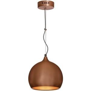 Подвесной светильник Lussole LSN-6106-01 светильник подвесной lussole mela lsn 0206 01