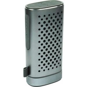 Портативная колонка Ritmix SP-440PB silver
