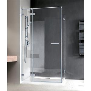 Душевая дверь Radaway Euphoria KDJ/L 110x200 (383041-01L) стекло прозрачное