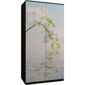 Шкаф 2-х ств. Миф Орхидея, с фотопечатью ПВХ