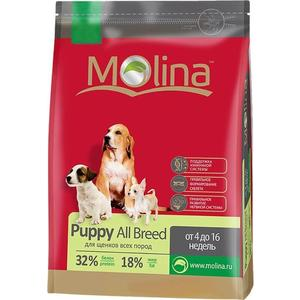 Сухой корм Molina Puppy All Breed с птицей для щенков всех пород от 4 до 6 недель 3кг (650821) 20210w led work light bar for suv atv utv wagon 4wd 4x4 led offroad light bar fog light 4d 12v 24v