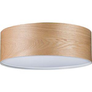 Потолочный светильник Paulmann 79650 потолочный светильник paulmann alva 79650
