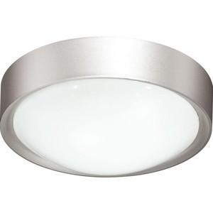 Потолочный светодиодный светильник Sonex 2029/A