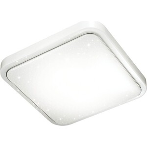 Потолочный светодиодный светильник Sonex 2014/C