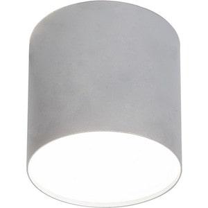 Потолочный светильник Nowodvorski 6527 пальто pinko 1g12sc 6527 g43
