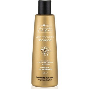 HAIR COMPANY PROFESSIONAL INIMITABLE COLOR Post Treatment Shampoo Шампунь для волос 250мл