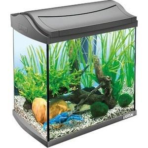 Аквариумный комплекс Tetra AquaArt Discover Line Crayfish для содержания раков и креветок 30л корм tetra tetramin xl flakes complete food for larger tropical fish крупные хлопья для больших тропических рыб 10л 769946