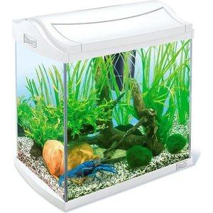 Аквариумный комплекс Tetra AquaArt Discover Line Crayfish White Edition для содержания раков и креветок 30л (белый) discover biology 3e student edition