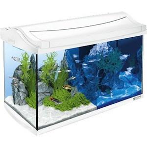 Аквариумный комплекс Tetra AquaArt LED Discover Line Tropical White Edition с LED освещением день / ночь 60л (белый)