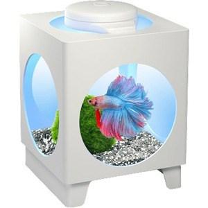 Аквариум Tetra Betta Projector LED White с LED освещением для петушков 1,8л (белый)