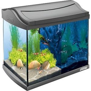 Аквариумный комплекс Tetra AquaArt LED Discover LineCrayfish с LED освещением день / ночь для содержания раков и креветок 20л