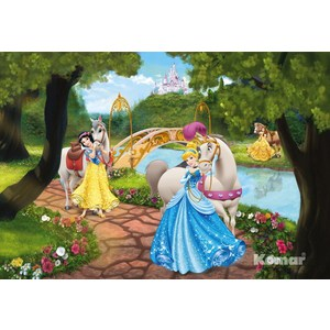 Фотообои Disney Princess Royal Gala (1,84х1,27 м) disney princess train case