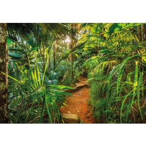 Фотообои Komar Jungle Trail (3,68х2,54 м) (8-989) jungle print cover notebook
