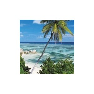 Фотообои Komar Palmtree (0,92х2,2 м) (2-1096) фотообои komar mix and match 2 905 1 84х1 27 м 2 905