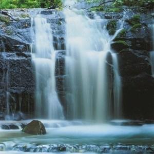 Фотообои Komar Pura Kaunui Falls (0,92х2,2 м) (2-1256) фотообои ovk design розы 140104 2 листа 2 5х2 8 м