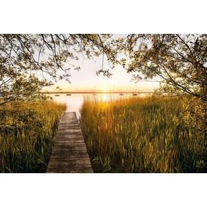 Фотообои Komar Lakeside (3,68х2,48 м) (XXL4-052) фотообои komar la maison 3 68х2 48 м xxl4 034