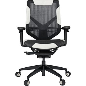 Фотография товара кресло Vertagear Gaming Series Triigger Line 275 black/white edition (748234)
