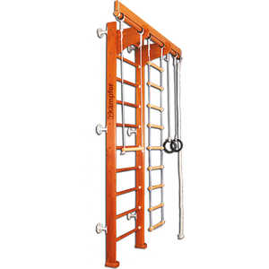 Детский спортивный комплекс Kampfer Wooden ladder (wall)