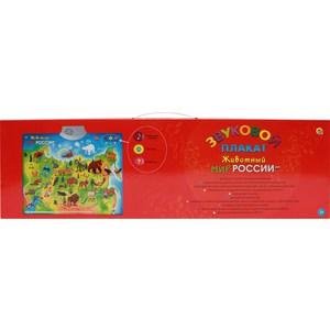 Звуковой плакат Рыжий Кот Животный мир России (ЗП-1560)