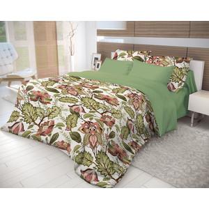 Комплект постельного белья Волшебная ночь Евро, ранфорс, Nuts с наволочками 70х70 (716339) поло print bar iron nuts