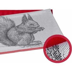 Набор кухонных полотенец Hobby home collection Squirrel коралловый 50x70 2 штуки (1501001629) кашпо 2 штуки quelle heine home 166488