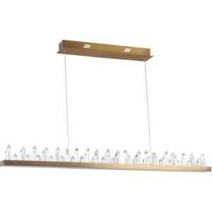Подвесной светодиодный светильник Maytoni H186-PL-01-53W-BS