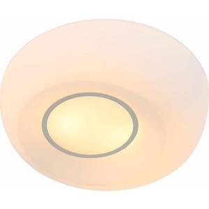 Потолочный светильник ST-Luce SL467.502.02