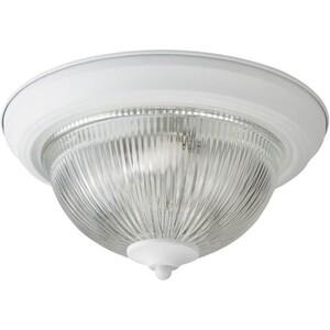 Потолочный светильник Artelamp A9370PL-2WH цена