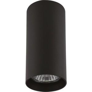 Потолочный светильник Lightstar 214487