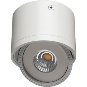 цены Потолочный светодиодный светильник Artelamp A4105PL-1WH