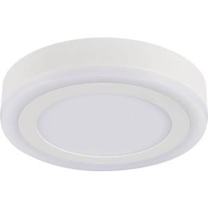 Потолочный светодиодный светильник Artelamp A7816PL-2WH