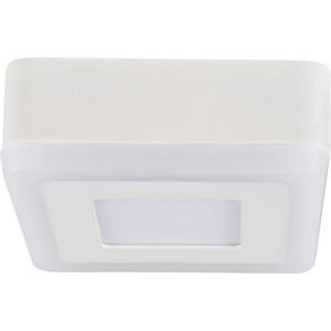 Потолочный светодиодный светильник Artelamp A7706PL-2WH