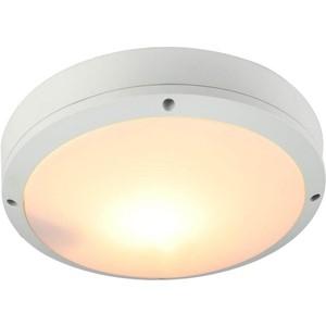 все цены на Уличный потолочный светильник Artelamp A8154PF-2WH онлайн